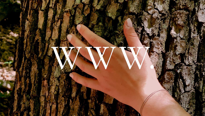 WWW Film Thumbnail